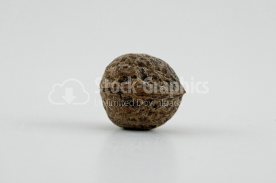 Nuts: Walnut - Stock Image