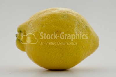 Whole Fresh Lemon Isolated on White Background