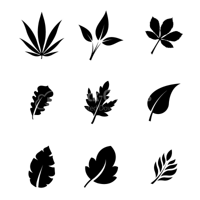 Decorative vector leaves