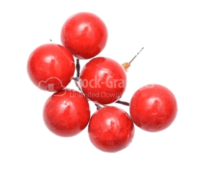 Holly berry christmas decoration