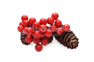 Fir-cone on a white background with red berries