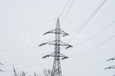 High voltage carrier power lines through the forest
