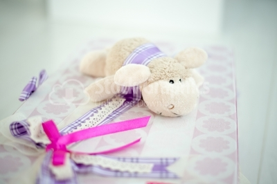 Sheep on newborn gift box