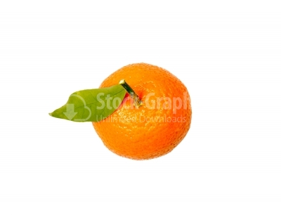 Corsican clementines isolated on white