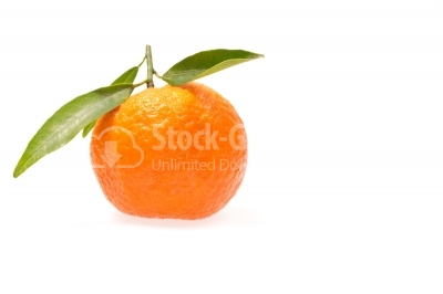 Clementine with green leaves
