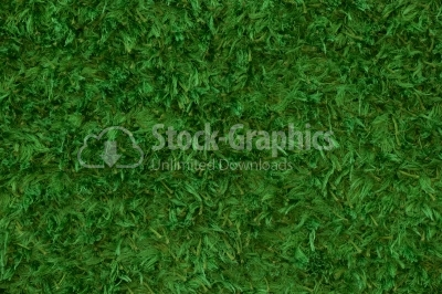 Green carpet fringed texture background