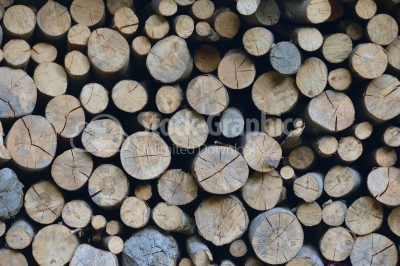 Background of dry chopped firewood logs stacked up on top of eac