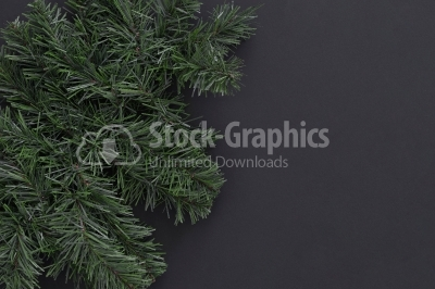 Christmas background. Fir-tree branches on black with copyspace.