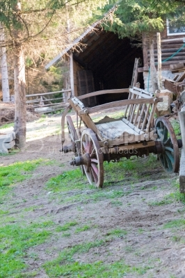 Old wooden animal cart