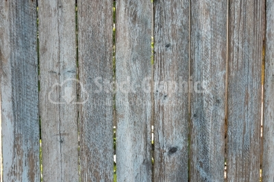 Wood grey wall close-up