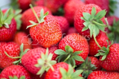 Fresh, ripe, red strawberries