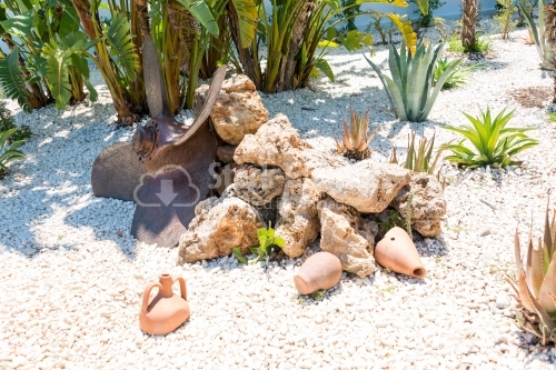 Gravel surrounded by plants