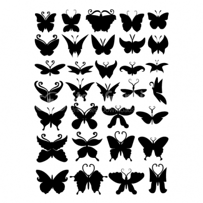Butterflies collection - Illustration