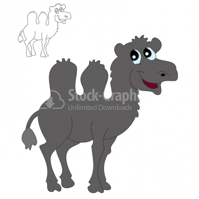 Camel - Illustration