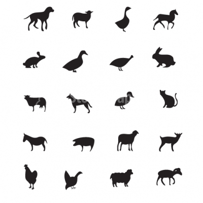 Domestic animals silhouette set