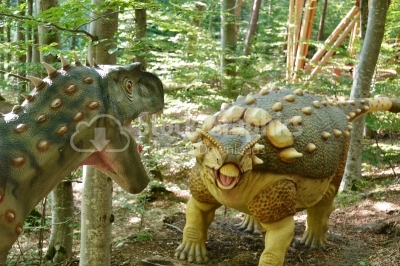 Battle between dinosaurs in Dino Parc in Rasnov, Romania