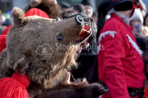 Bear head costume. The annual Winter Traditions and Customs Festival.