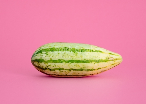 Melon on a pink background