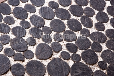 Paving made from sliced logs and white stone