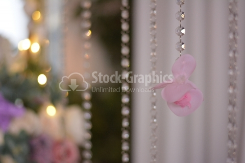 Pink flower on a diamond rope