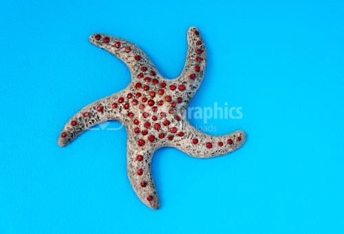 Red-dotted Aquatic Organism