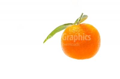 Single clementine isolated on white background