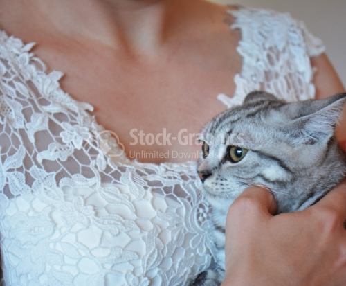 The bride with a scared cat in her arms.