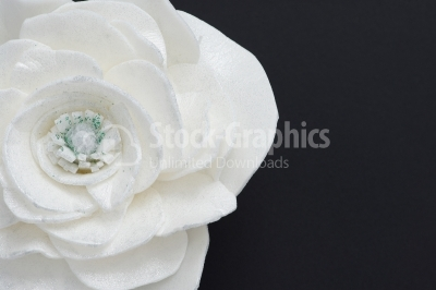 White floating flowers. Black slate background